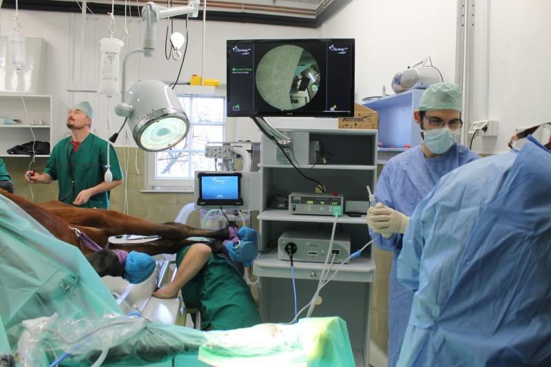 Usklajena ekipa v sodobno opremljeni operacijski sobi.