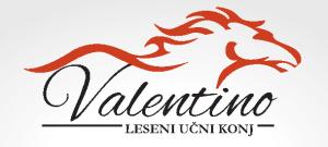 Valentino logo